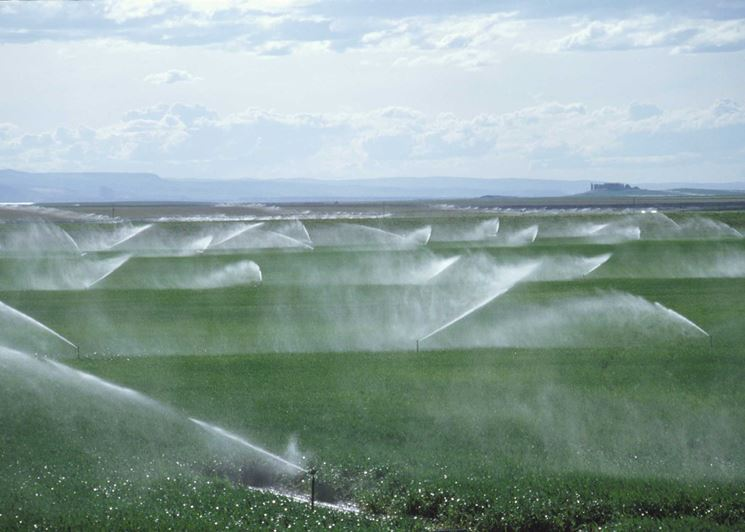 Impianto agricolo irrigazione a pioggia
