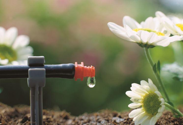 Irrigatore a goccia
