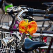 Bicicletta in centro città