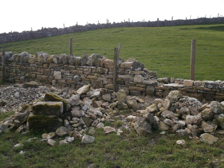 Muro riparare