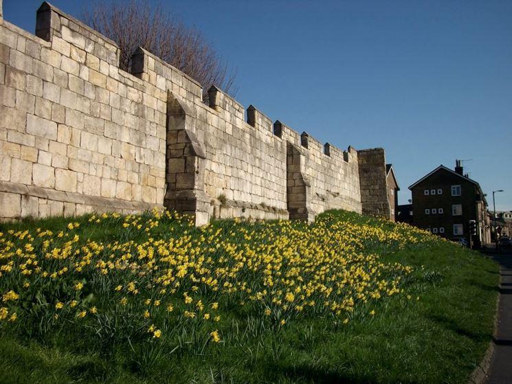 Antiche mura perimetrali