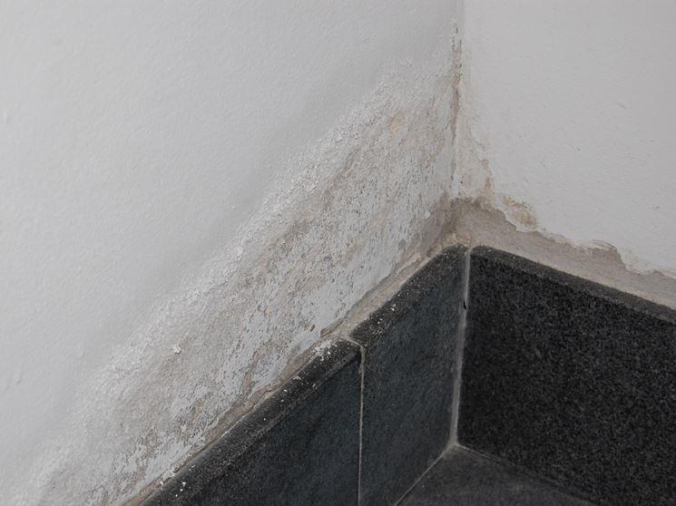 Danni da umidità su parete