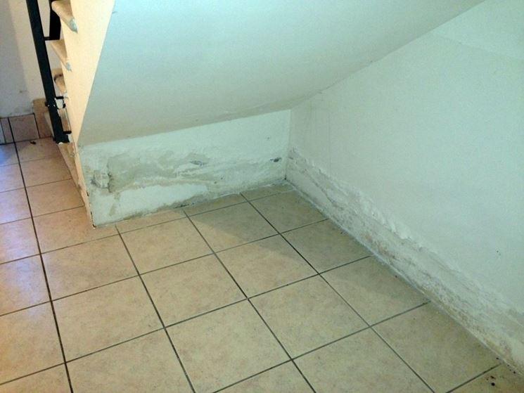 Umidità di risalita su parete
