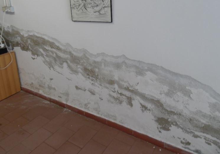 Umidità capillare su muro