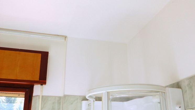 Pittura antimuffa bianca
